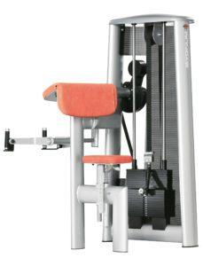 Sygnum Biceps Curl Machine