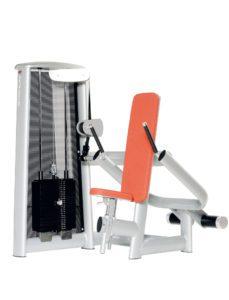 Triceps Machine vertical